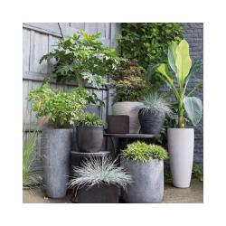 Pots + Planters